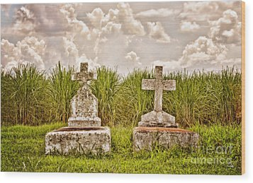 Seasons Of Life Wood Print by Scott Pellegrin