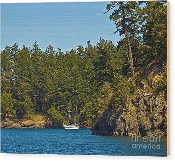 Secluded Anchorage Wood Print by Chuck Flewelling