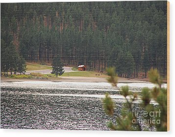 Wood Print featuring the photograph Secluded Cabin by Mary Carol Story