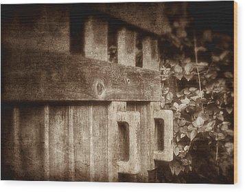 Secluded Garden Wood Print by Tom Mc Nemar