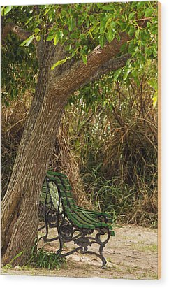 Secluded Park Benches Wood Print by Jess Kraft