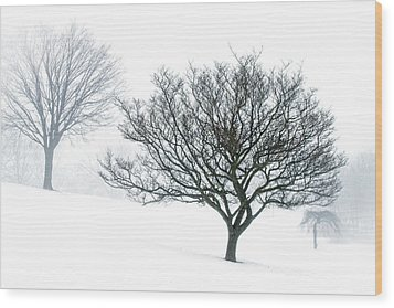 Wood Print featuring the photograph Secluded Silver Lining...... by Russell Styles