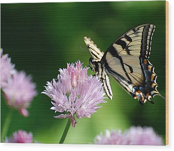 Second Nature Butterfly Wood Print by Christina Rollo