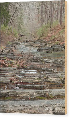 Secret Creek Wood Print by Iris Greenwell