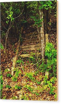 Secret Stairway Wood Print