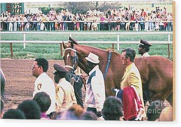 Secretariat Race Horse Looking At Me Before He Won A Big Race At Arlington Race Track In 1973.  Wood Print