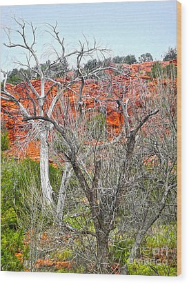 Sedona Arizona Dead Tree Wood Print by Gregory Dyer