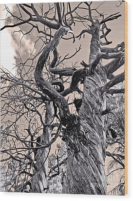 Sedona Arizona Ghost Tree In Black And White Wood Print by Gregory Dyer