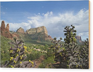 Wood Print featuring the photograph Sedona Cactus In Bloom by Maria Janicki