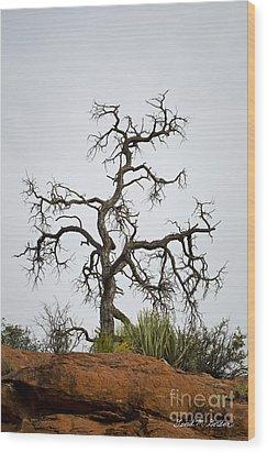Sedona Landscape Vii Wood Print by Dave Gordon
