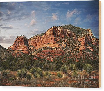 Wood Print featuring the photograph Sedona Vortex  And Yucca by Barbara Chichester