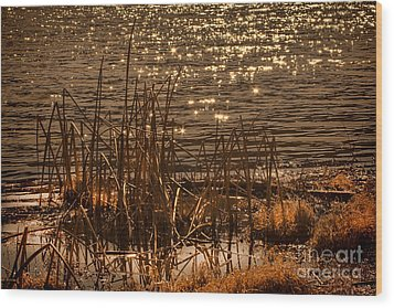 Seegrass Riple Wood Print