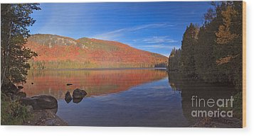 Seeing Red At Jobs Pond Wood Print