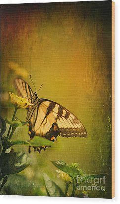 Seeking Sweetness 2 Wood Print by Lois Bryan