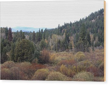 Seeley Lake Wood Print by Larry Stolle