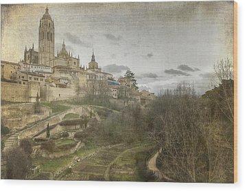 Segovia View Wood Print by Joan Carroll