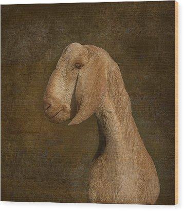 Self Portrait Wood Print by Jeff Burgess