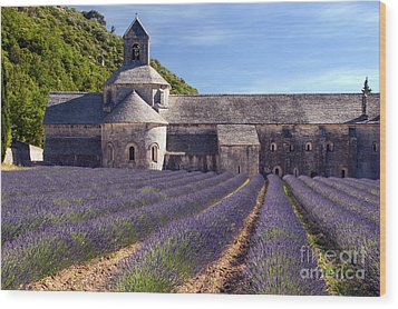 Senanque Abbey Wood Print by Bob Phillips