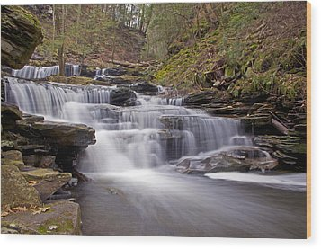 Seneca Falls In Spring Wood Print