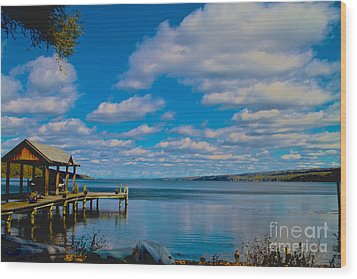 Seneca Lake At Glenora Point Wood Print by William Norton