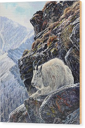 Sentinel Of The Canyon Wood Print by Steve Spencer