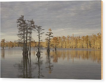 Sentinels Of The Lake Wood Print by Jane Eleanor Nicholas