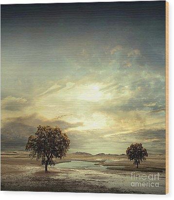 Wood Print featuring the digital art Separating River by Franziskus Pfleghart