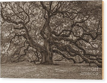 Sepia Angel Oak Wood Print