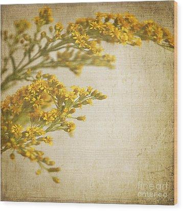 Sepia Gold Wood Print by Lyn Randle