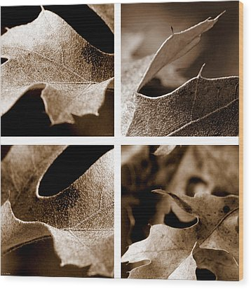 Wood Print featuring the photograph Sepia Leaf Collage by Lauren Radke