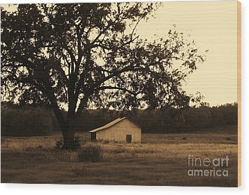Wood Print featuring the photograph Sepia Simplicity by Julie Clements