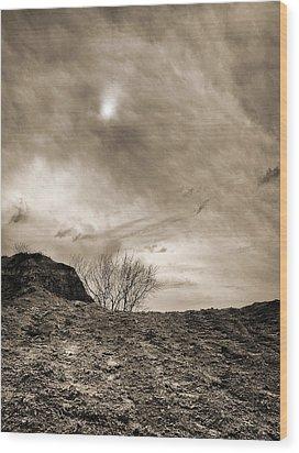 Sepia Skies Wood Print by Meir Ezrachi