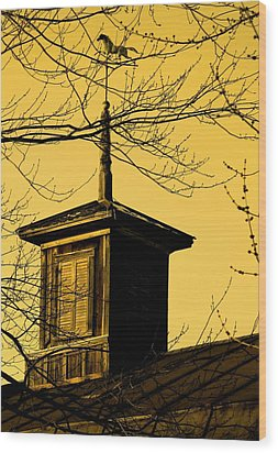 Sepiatone Cupola Wood Print by Debbie Finley