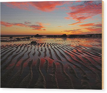 Wood Print featuring the photograph September Brilliance by Dianne Cowen