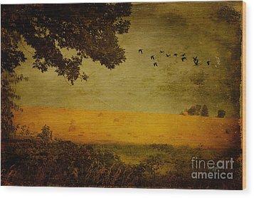 September Wood Print by Lois Bryan