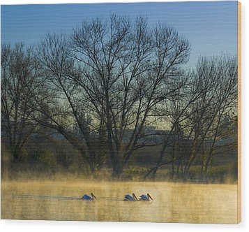 Sepulveda Dam At Dawn On New Year's Day 2015 Wood Print