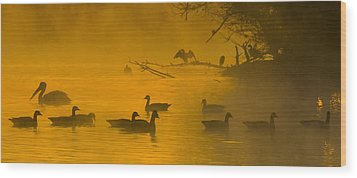 Sepulveda Dam Morning Wood Print