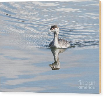Wood Print featuring the photograph Serene Grebe by Anita Oakley
