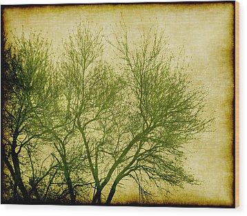 Serene Green 2 Wood Print by Wendy J St Christopher
