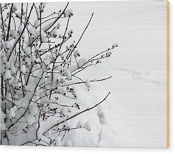 Serene Wood Print