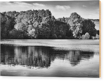 Serene Reflection Wood Print by Jay Harrison