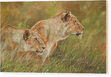 Serengeti Sisters Wood Print by David Stribbling
