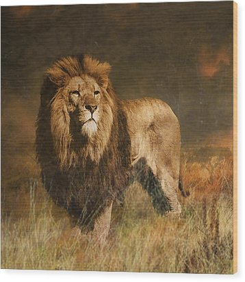 Wood Print featuring the photograph Serengeti Sunset by Brian Tarr