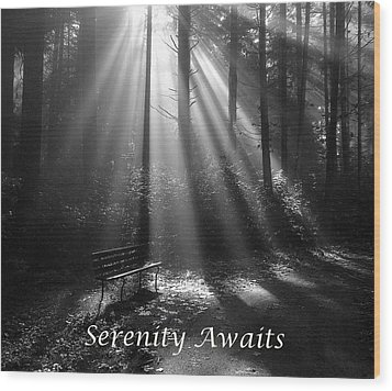 Serenity Awaits Wood Print by Brian Chase