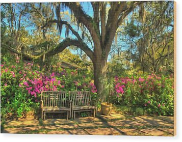 Serenity Bench Wood Print by Ed Roberts
