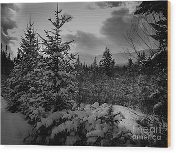 Serenity Wood Print by David Rucker