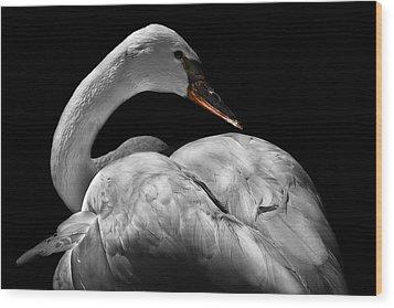 Serenity Wood Print by Debra and Dave Vanderlaan