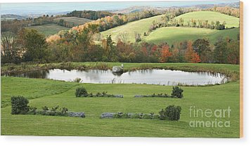 Wood Print featuring the photograph Serenity Hill by Carol Lynn Coronios