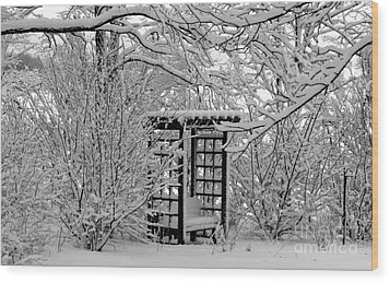 Serenity In Snow Wood Print