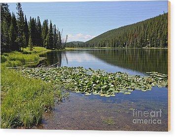 Serenity In Yellowstone Wood Print by Teresa Zieba
